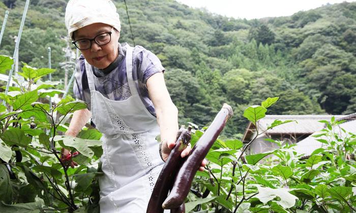 【都内忙しく働く大人の味方野菜不足必見!】| 都内八百屋厳選3選