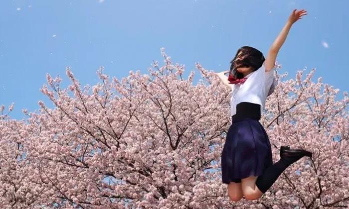 【人生の第一難関高校受験。達成に向けた選択肢その1】|渋谷区厳選3選