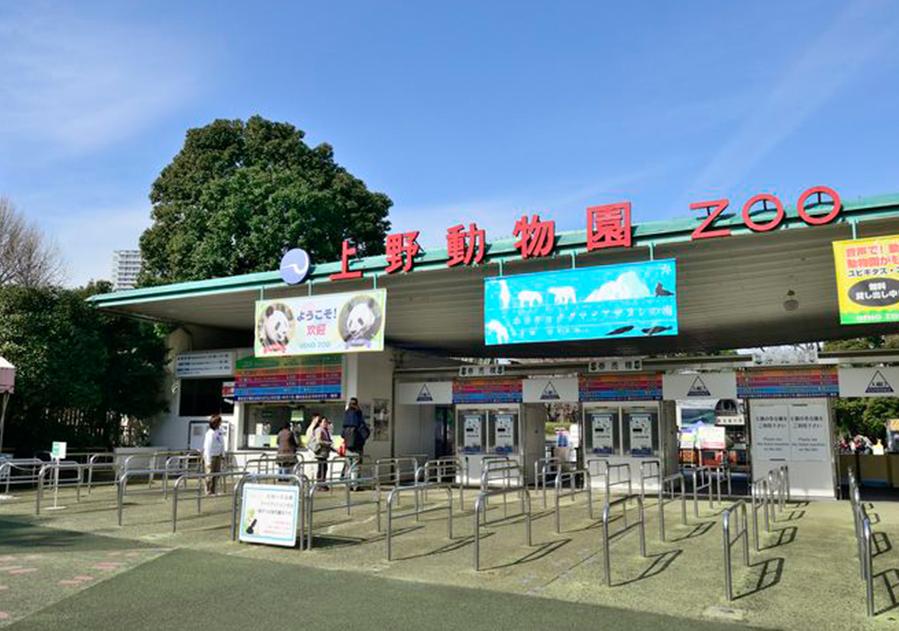 【上野の家族でお出かけスポット】 厳選5選!